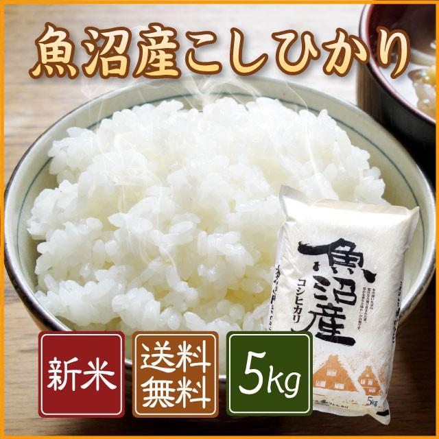 【新米】魚沼産コシヒカリ 5kg<送料無料 白米 5...