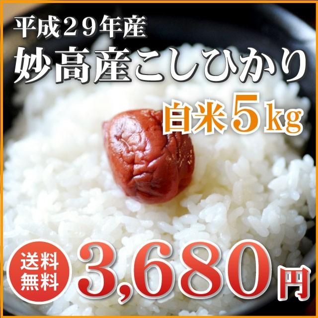 【隠れた名産地】妙高産コシヒカリ 白米 5kg(5キ...