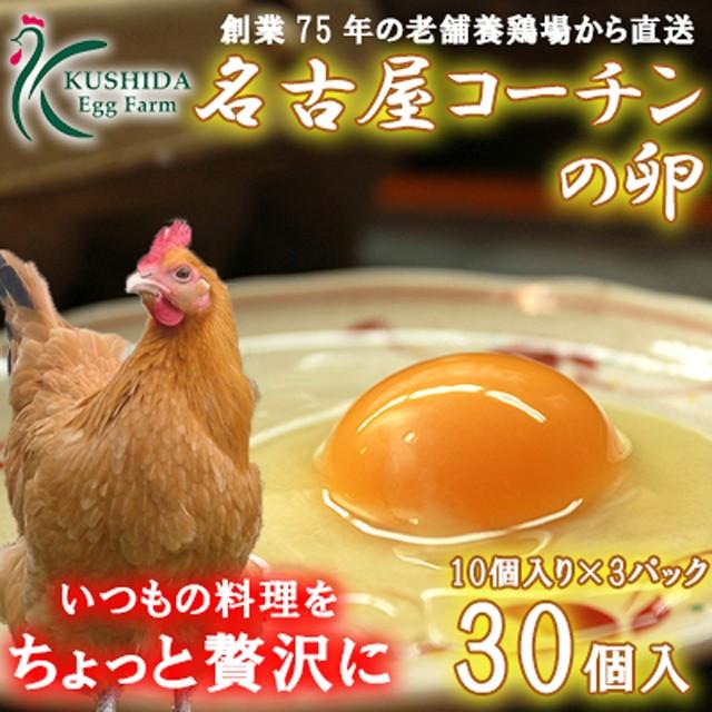 高級卵☆愛知が誇るブランド卵☆名古屋コーチンの卵【30個入(破卵保障3個含む)】