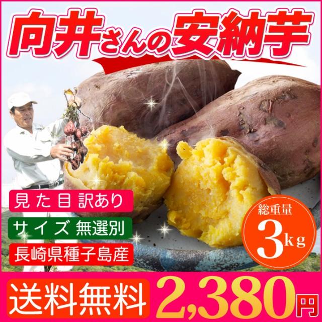 【送料無料】鹿児島県種子島産 濃厚な味わいのさ...