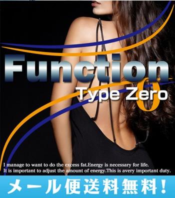 【メール便送料無料】Function Type Zero ファン...