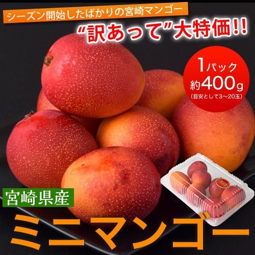 宮崎県産 『ミニマンゴー』 約400g 目安として...