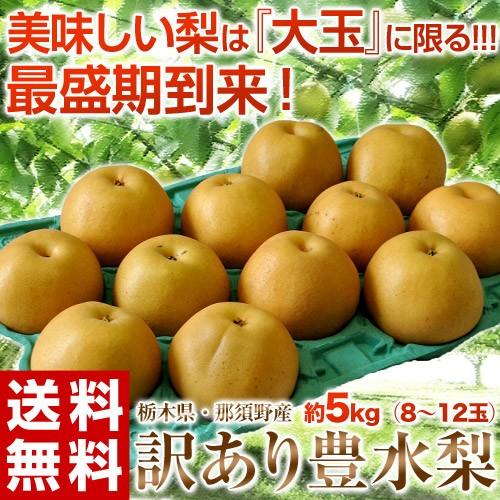 【大玉限定】 栃木県那須野産 「豊水梨」 無選別...