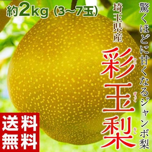 《送料無料》埼玉県産「彩玉梨」約2kg(3〜7玉) ...