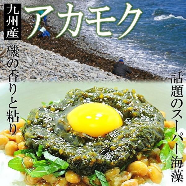 【送料無料】TVで紹介♪免疫力↑スーパー海藻【ア...