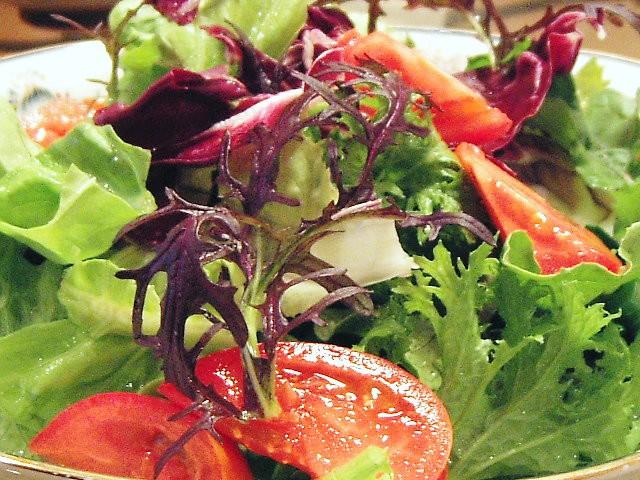 ☆畑直送☆こだわり有機栽培サラダ野菜セット