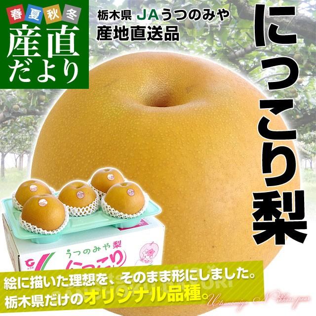 送料無料 栃木県より産地直送 JAうつのみや 栃...