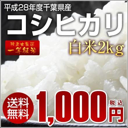 【送料無料】平成28年千葉県産コシヒカリ《一等米...