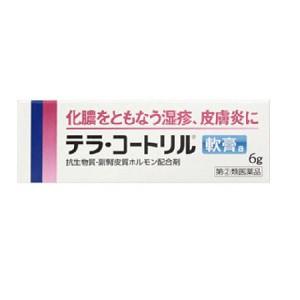 【第(2)類医薬品】テラ・コートリル軟膏a 6g  ...