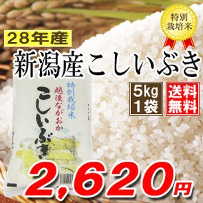 新潟県産こしいぶき5k 28年産 特別栽培米 ≪高田...