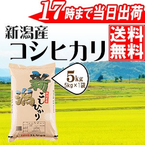 新潟県産コシヒカリ5kg【28年産】【送料無料(一部...