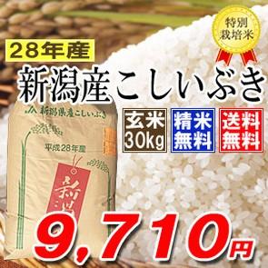 玄米30k 新潟県産こしいぶき 特別栽培米 28年産 ...