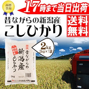 昔ながらの新潟産こしひかり 2kg 28年産 特別栽培...