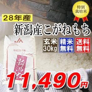 〔もち米〕新潟産こがねもち 玄米30kg(精米無料) ...