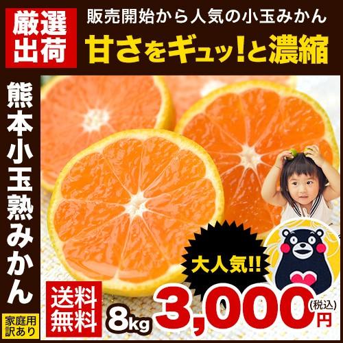 ★たっぷり8kg★「熊本小玉熟みかん」訳あり★3S...