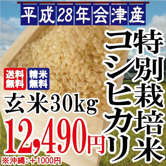 平成28年 会津産 特別栽培 コシヒカリ 玄米 30kg...
