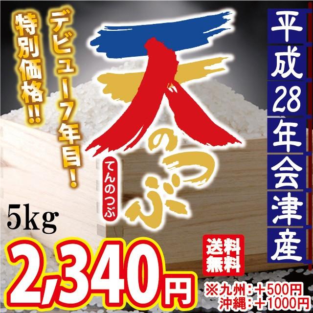 平成28年 会津産 天のつぶ 白米 5kg  ※九州は別...