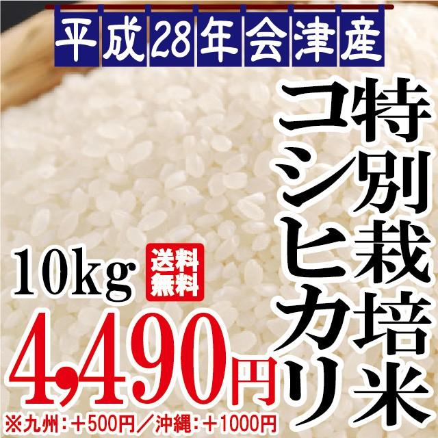 平成28年 会津産 特別栽培 コシヒカリ 10kg ※九...