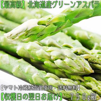 【送料無料・正規品】北海道産グリーンアスパラ ...