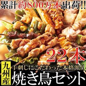 【送料無料】【同梱不可】九州産焼き鳥セット22本入り 手刺しにこだわった本格派 (NK00000047)