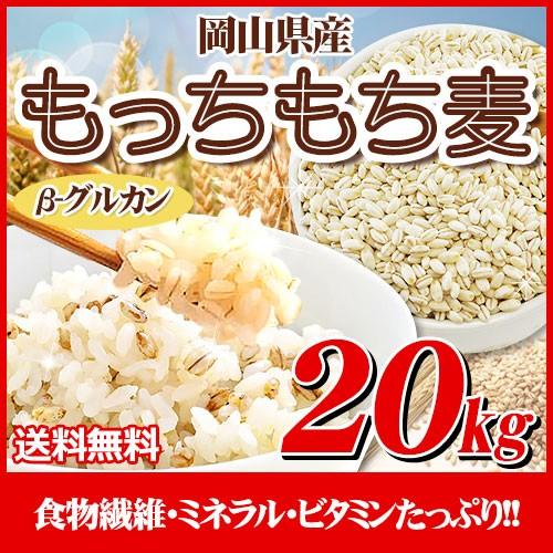 29年岡山県産大麦100%もっちもち麦20kg【5Kg×...