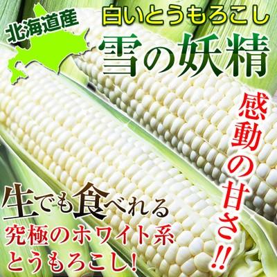 北海道産とうもろこし雪の妖精 約4kg(11〜15本...