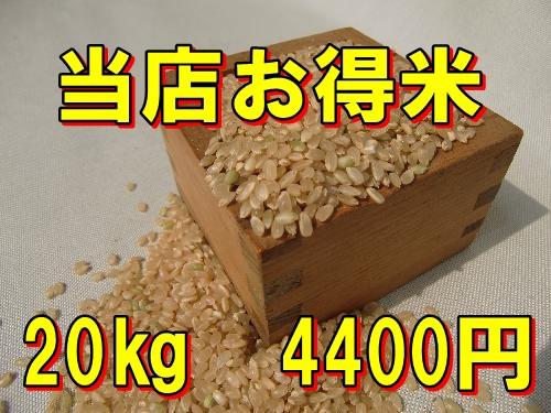 【精白米】当店お得米20kg/訳あり商品/規格外商...