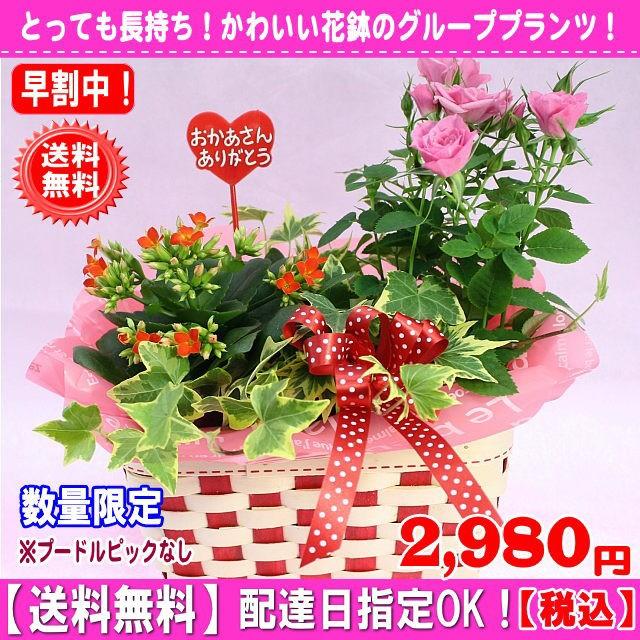 オススメ★母の日はちもの★マミーバスケット【プ...