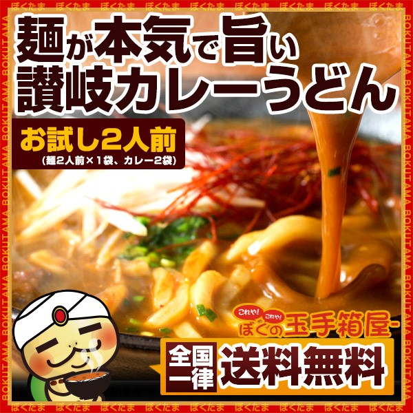カレーうどん 本場香川県 讃岐カレーうどん お試...