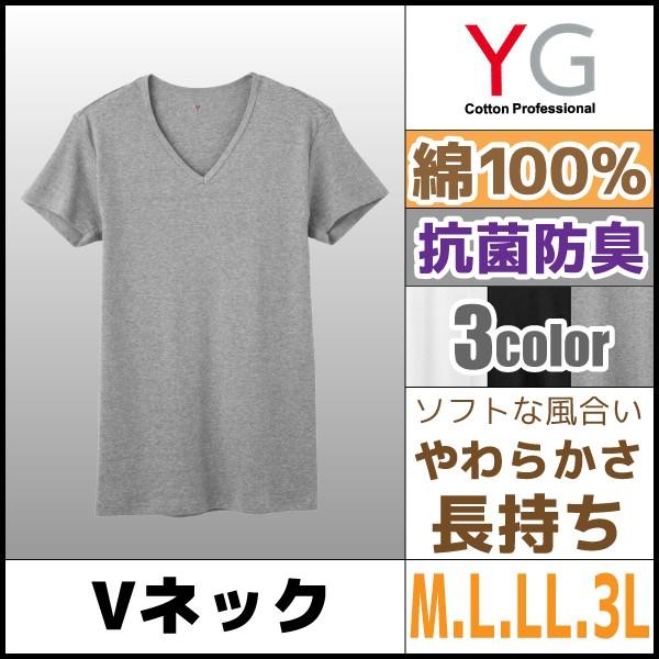YG VネックTシャツ グンゼ YV0015