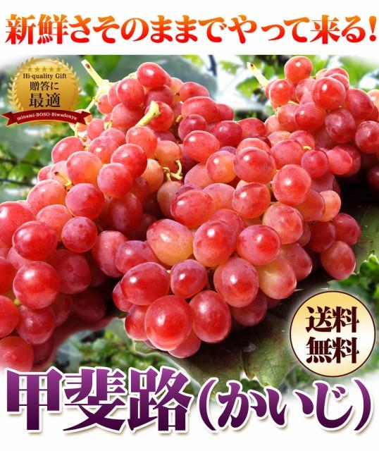 赤葡萄の女王甲斐路1kg(3〜4房)/フルーツ/かいじ/...