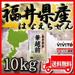 [ 送料無料 ] 福井産 華越前 10kg 福井県産 はな...