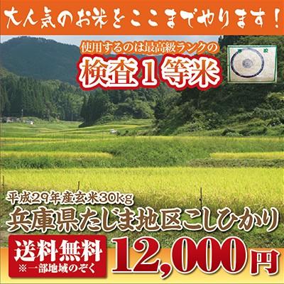 【29年産新米】兵庫県たじまコシヒカリ玄米30kg【...