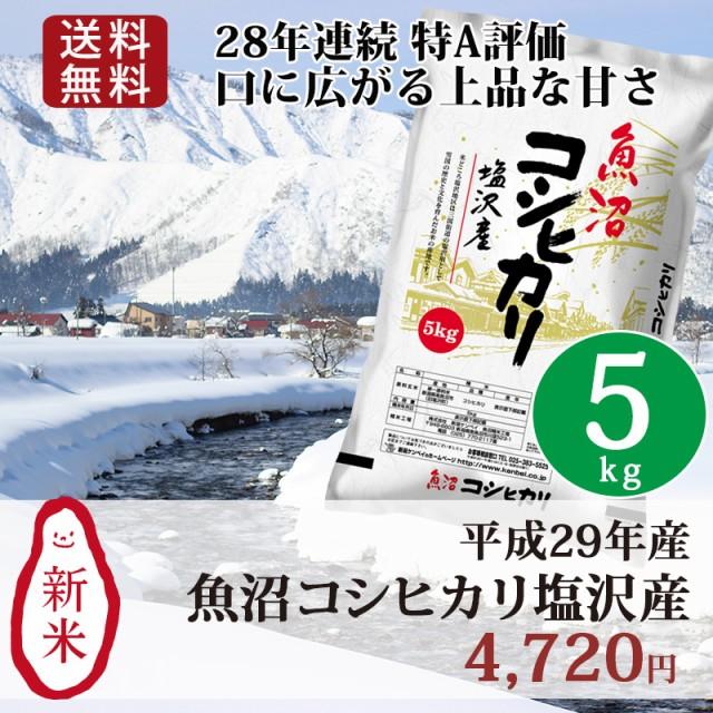 米 お米 5kg 新潟 魚沼 塩沢産コシヒカリ 29年産 ...