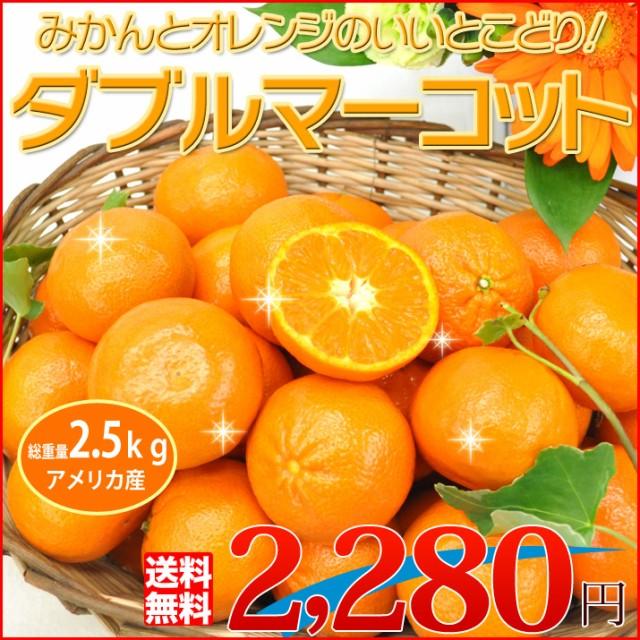 【送料無料】みかんとオレンジのいいとこ取り ダ...