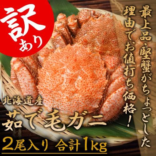 """訳あり""""堅蟹""""北海道産「毛ガニ」2尾(合計1kg) ..."""