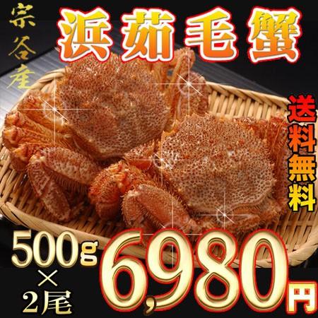 【送料無料】宗谷産大きい500g毛蟹2尾       業...