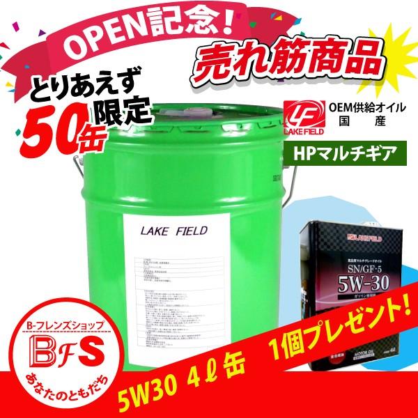 【オープン記念セール 景品付き】LAKE FIELD HP...