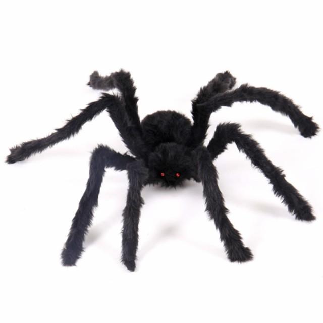 蜘蛛 くも びっくり 驚かせる お化け屋敷 文...
