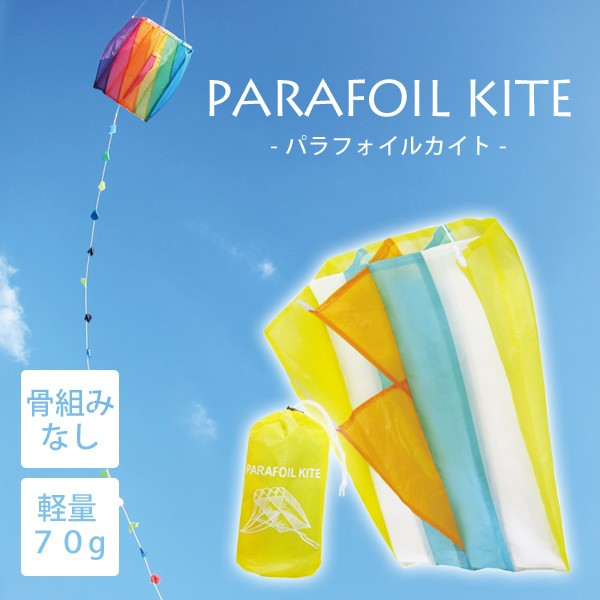 Leaflets PARAFOIL KITE パラフォイル カイト 凧 ...