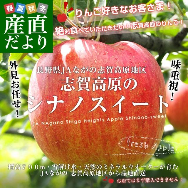 送料無料 長野県より産地直送 JAながの 志賀高...