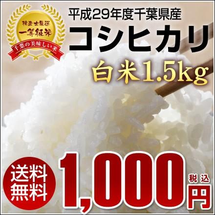 【送料無料】平成29年千葉県産新米コシヒカリ《一...