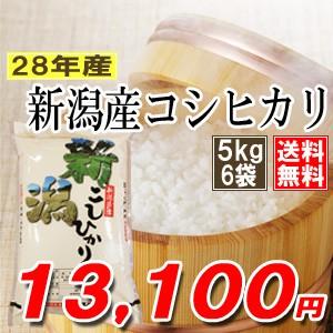 新潟県産コシヒカリ30kg(5kg×6袋)【28年産】【送...