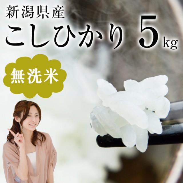 送料無料★新米 無洗米5kg 新米29年産 新潟県産...