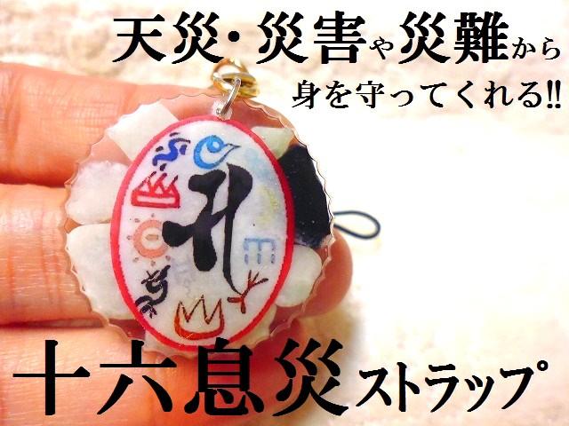 天災・災害・災難・戦争から身を守る★円型★十六...