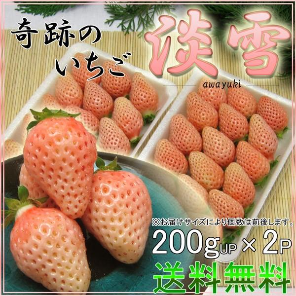 送料無料【新品種】甘く酸味が少ない白イチゴ『淡...
