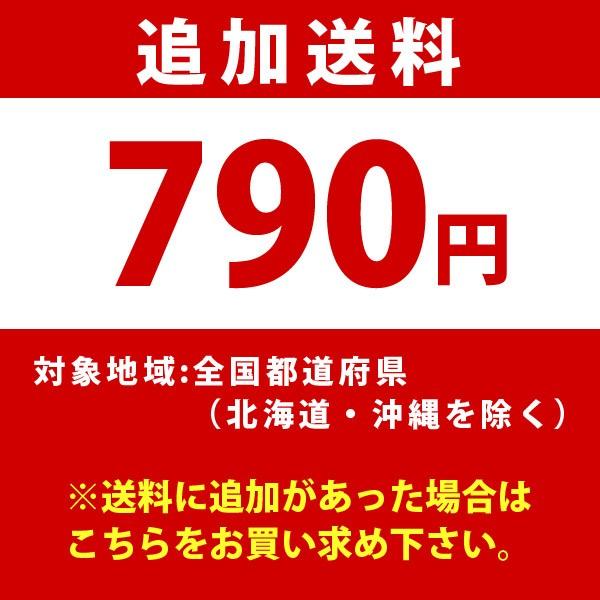 追加送料 通常地域(790円)