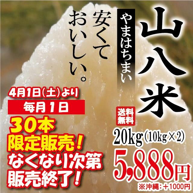 当店人気No.1 山八米 20kg(10kg×2)※沖縄は別...