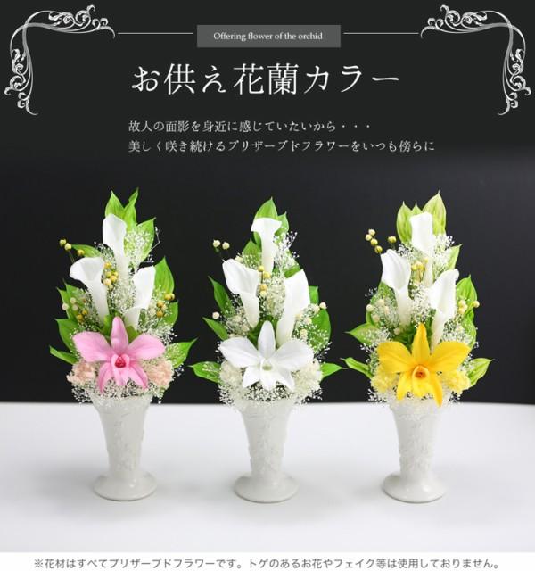 お供え花「蘭カラー」 送料無料 プリザーブドフラ...