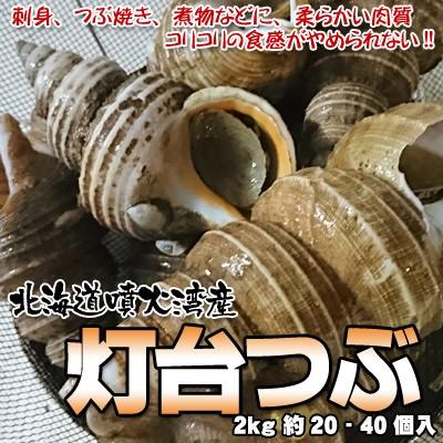 つぶ貝 灯台つぶ 北海道産 2kg 約20-40個入 送料...